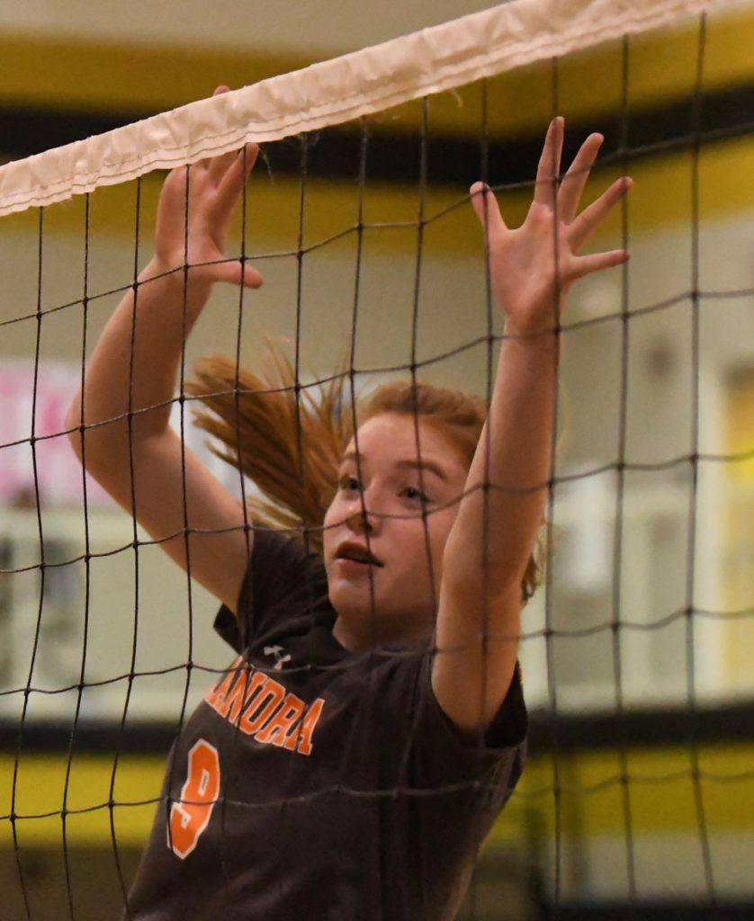 Aubrey Pope makes a play at the net for Alexandria.