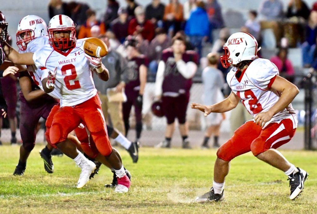 Tyrese Sheppard (2) and Connor Fordham are a strong combination in the backfield. They accounted for five of the Bulldogs' touchdowns Friday night. (All photos by B.J. Franklin/GungHo Photos)