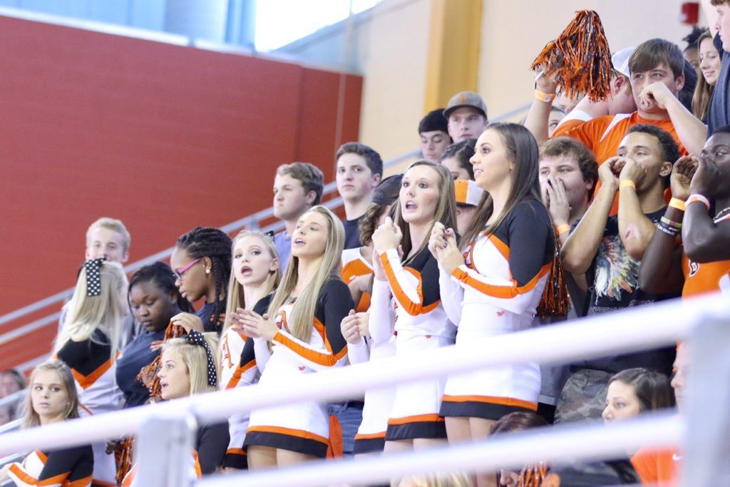 Alexandria's fans had a lot to cheer about as their team won two matches to reach Thursday's state championship match.